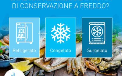 COME CONSERVARE A FREDDO: REFRIGERATO, CONGELATO, SURGELATO